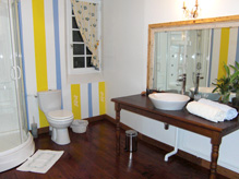 Blue room - Private bathroom